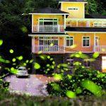 今年的螢火蟲油桐花季!就預約友善親子的加州莊園!